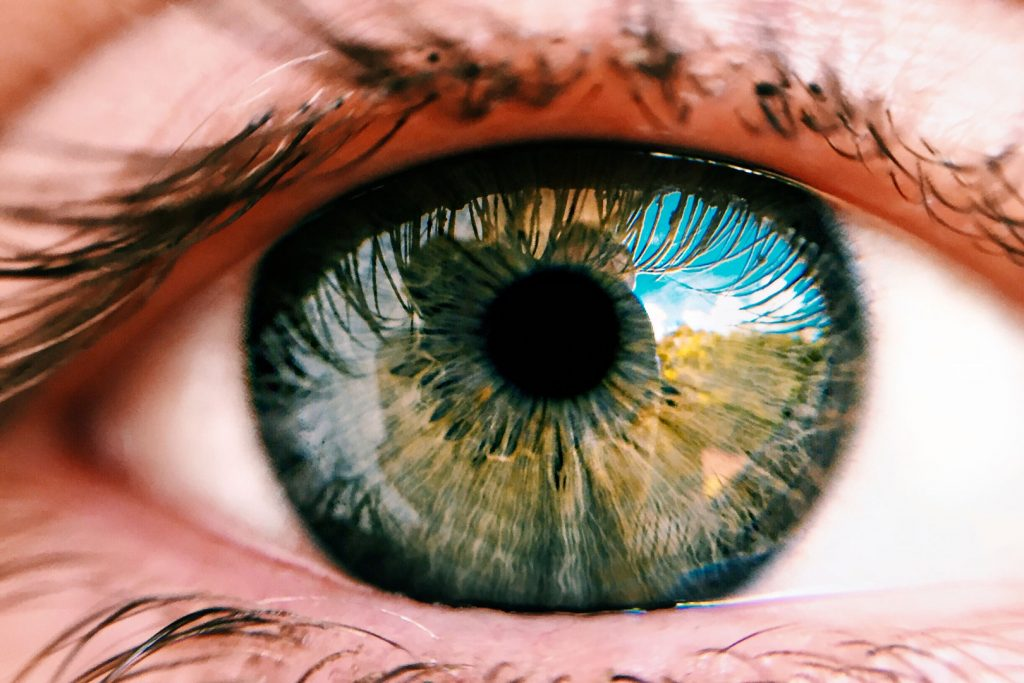 A quoi sert l'iridologie ?