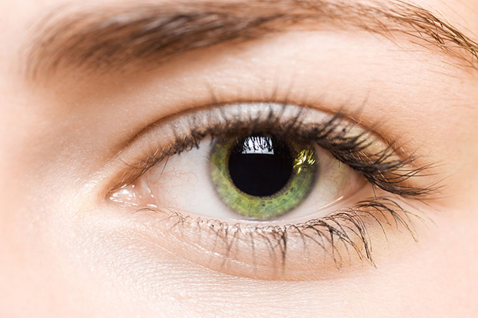 L'iridologue analyse votre iris