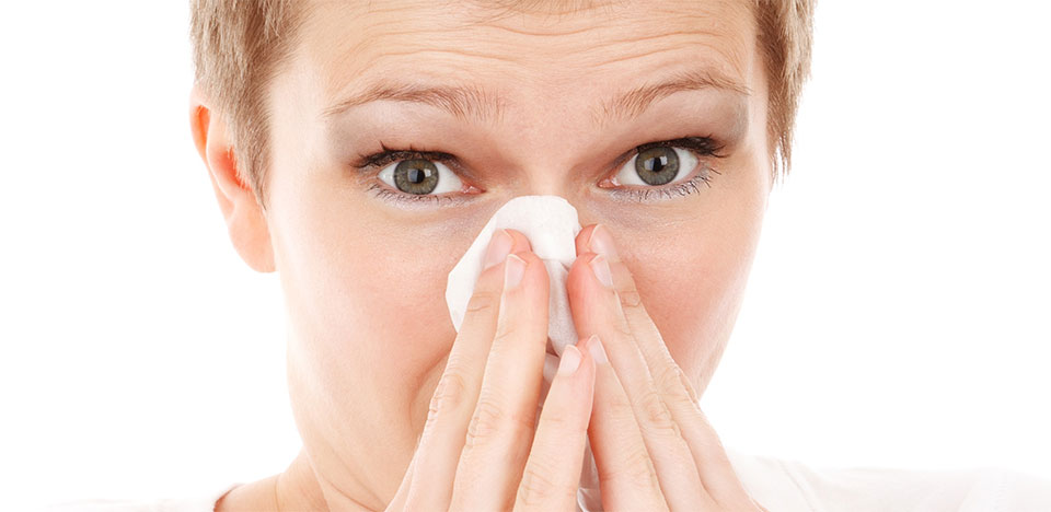 les-allergies-calendrier-allergie