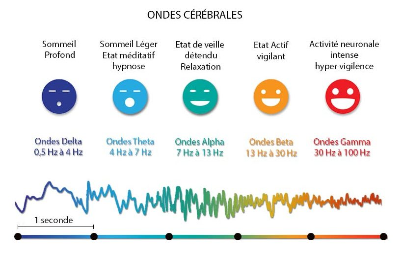 Schéma ondes cérébrales médiations