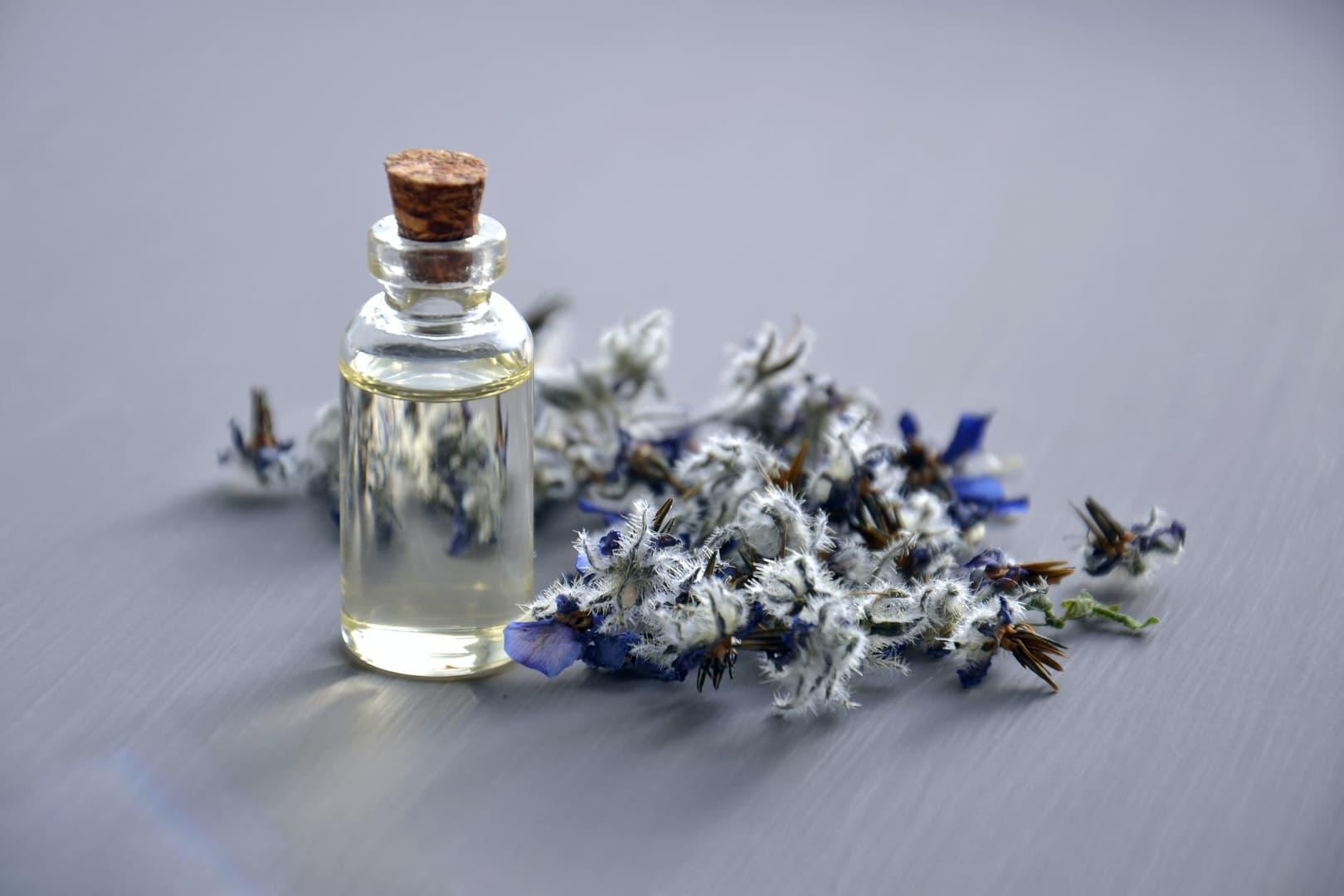 Naturopathie : bienfaits, contre-indications et quand consulter ?